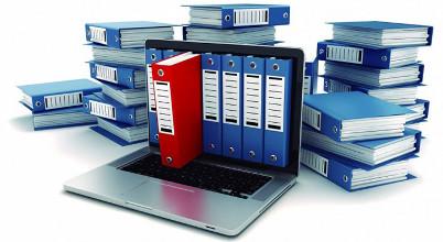 Сбор первичной информации об организации