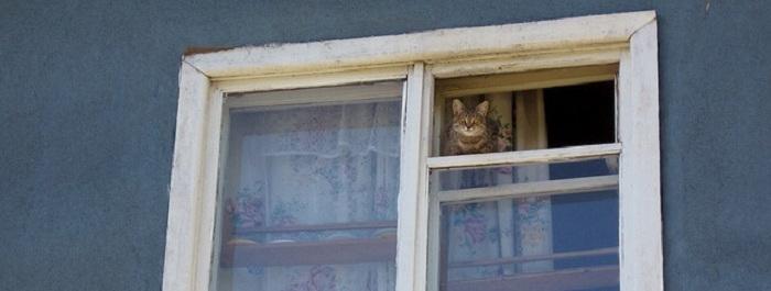 Советские окна, деревянные, без утепления