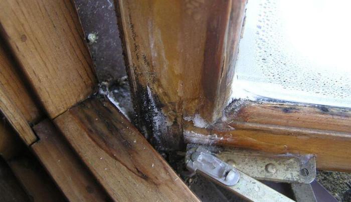 Что делать с деревянными окнами