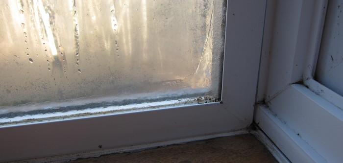 Что делать с конденсатом на окнах